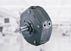 Radial piston fixed displacement pumps