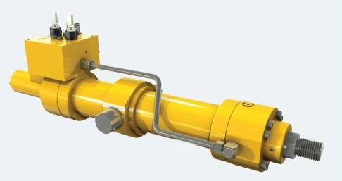 Subsea hydraulic cylinder